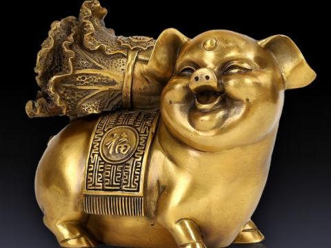 不同季节出生的属猪有不一样的个性特点,生肖属相,猪