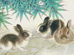 哪些月份出生的属兔女人有好的偏财运