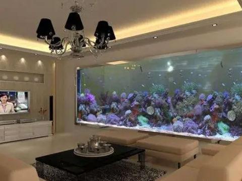 客厅摆放鱼缸好不好,摆放鱼缸的好处是什么,风水命理,灵异