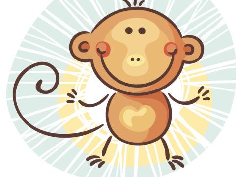 不同季节出生的属猴有不一样的个性特点,生肖属相,猴